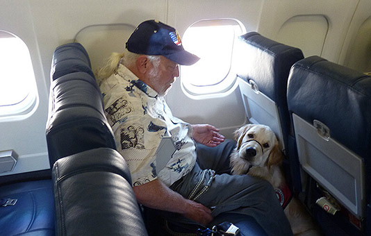 Emotional support dog on a plane